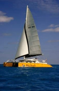 While in the Gulf Shores / Orange Beach area, take a sail on Wild Hearts! Check them out at www.sailwildhearts.com.